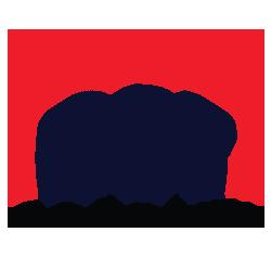 dstcourier logo
